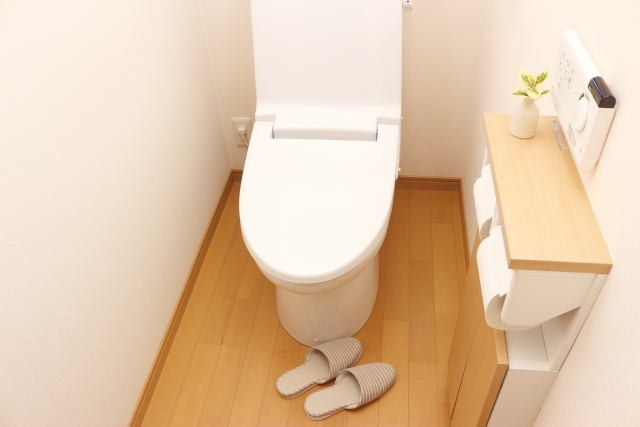 トイレ 悪臭 原因